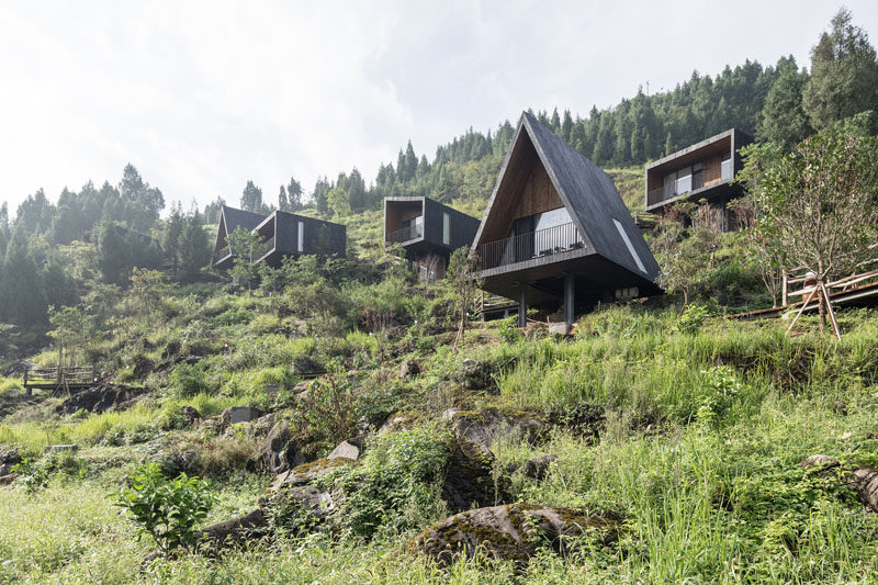 The Woodhouse Hotel Introduces Agricultural Tourism To Rural China