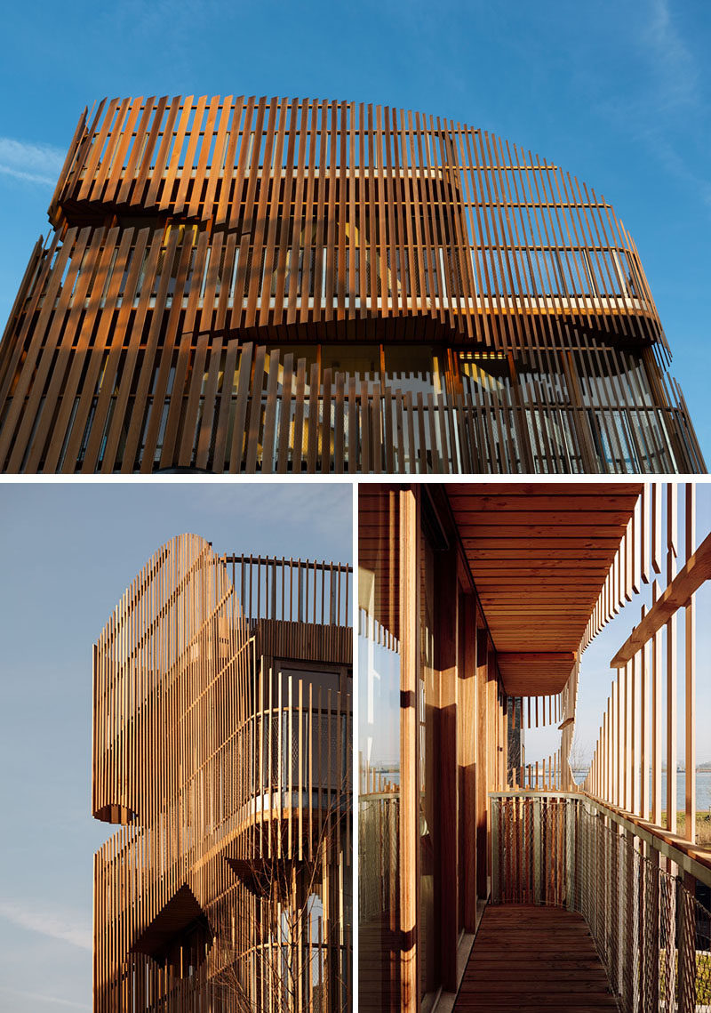 Wood louvers allow the optimal amount of sunlight to flood this modern building, as well as provide the necessary privacy of the inhabitants. #WoodSlats #WoodLouvers #ModernArchitecture