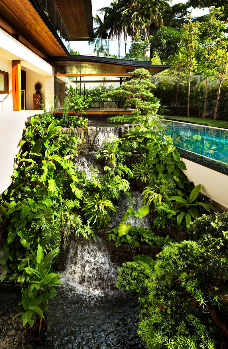 A landscaping design feature of this modern house, is a waterfall surrounded by lush plants, that flows down to a pond, creating a serene experience for the homeowners. #Waterfall #LandscapeDesign #Garden #Landscaping #WaterFeature