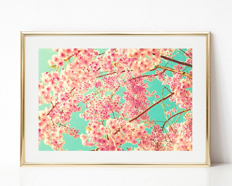 Titled 'A Party Of Cherry Blossoms', this photography print by Caroline Mint, provides an alternative view of the cherry blossoms. #CherryBlossomWallArt #CherryBlossom #CherryBlossomDecor #CherryBlossomArt