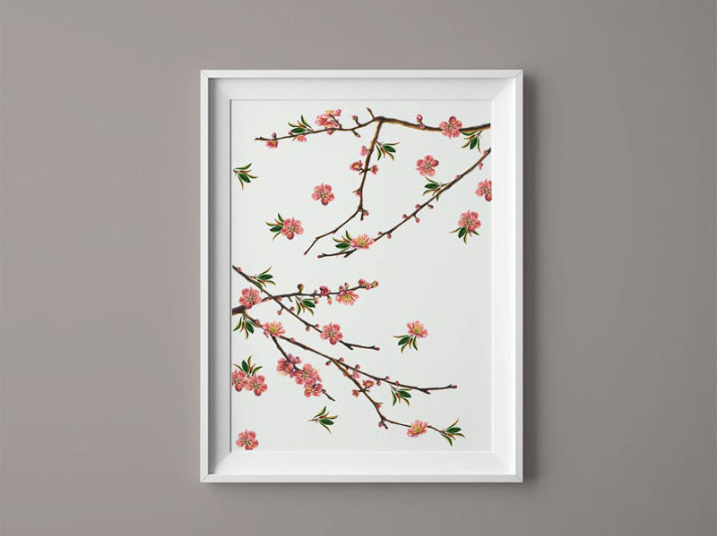 This modern cherry blossom art print on a white background adds a delicate touch to any wall. #CherryBlossomWallArt #CherryBlossom #CherryBlossomDecor #CherryBlossomArt