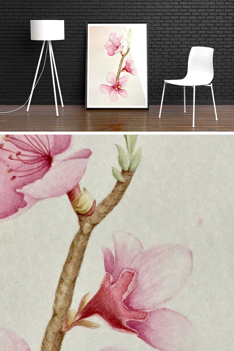 This large cherry blossom wall art is a giclee print of an original watercolor painting by Lana Albana. #CherryBlossomWallArt #CherryBlossom #CherryBlossomDecor #CherryBlossomArt