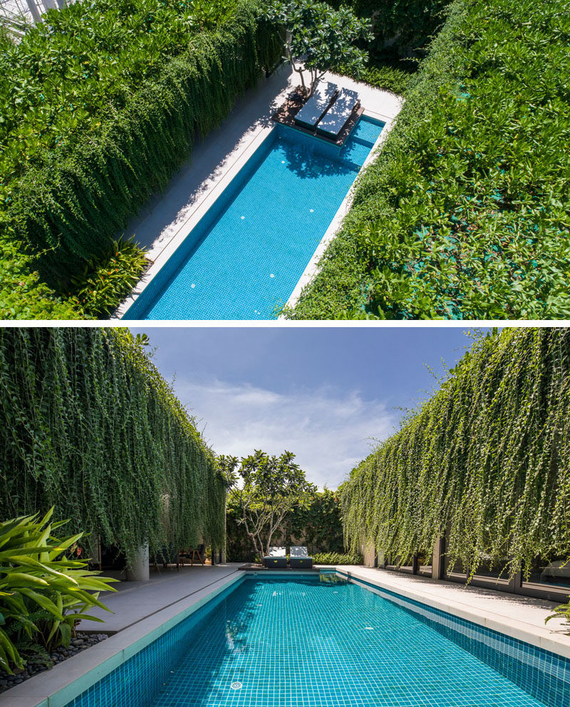 Landscaping Ideas - Hanging gardens provide a lush environment for the swimming pool and privacy for the interior rooms. #Gardens #HangingGarden #PlantCurtain #Landscaping #SwimmingPool
