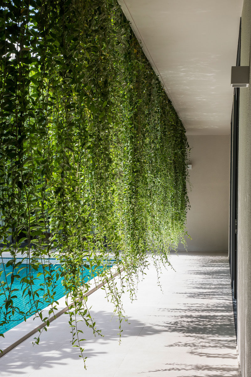 Landscaping Ideas - Hanging gardens provide a lush environment and privacy for interior rooms. #Gardens #HangingGarden #PlantCurtain #Landscaping