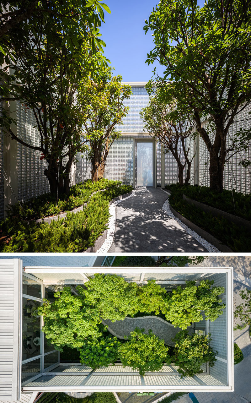 Landscaping Ideas - This modern glass block sales gallery features an interior courtyard with mature trees and a pathway. #Landscaping #InteriorCourtyard #GardenDesign
