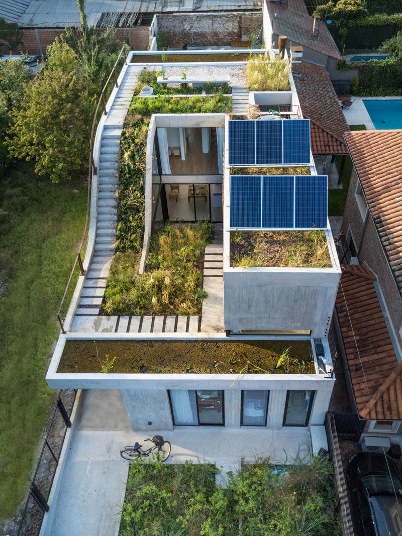 Rooftop Garden Ideas - This modern concrete house has a garden that travels over three levels. #RooftopGarden #GardenDesign #ModernGarden