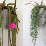 HeadPlanters Are An Unexpected And Fun Wall Planter