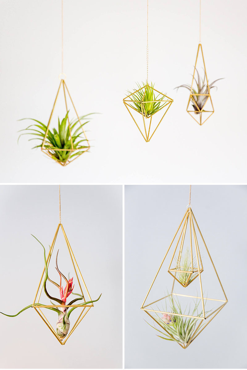 Decor Ideas - Lana Rouse of himmelilana, has designed a collection of modern air plant holders with a geometric shape. #ModernDecor #DecorIdeas #AirPlantHolder #Design