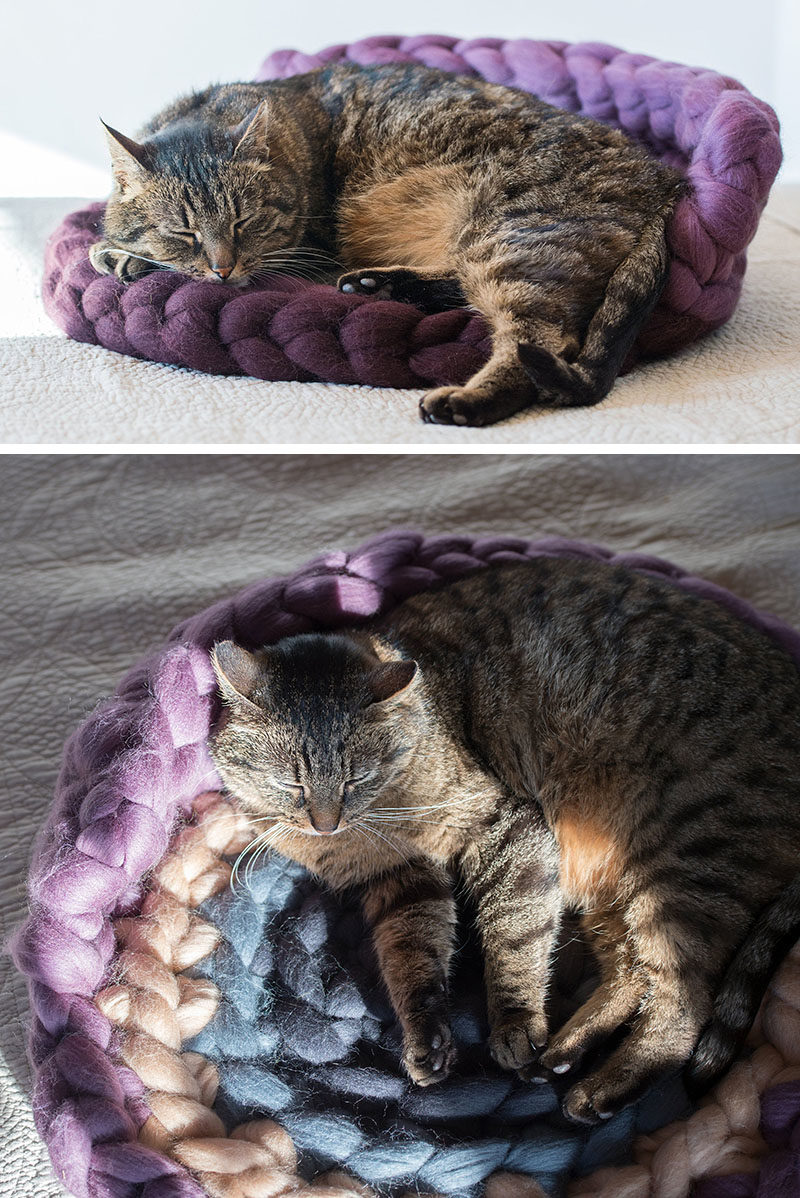 Cat Bed Ideas - This chunky knit cat bed is made from 100% natural wool, and features modern colors. #ModernCatBed #CatBedIdeas #ModernPetBed #ChunkyKnit #KnittedCatBed #Kitten #Cat #Design
