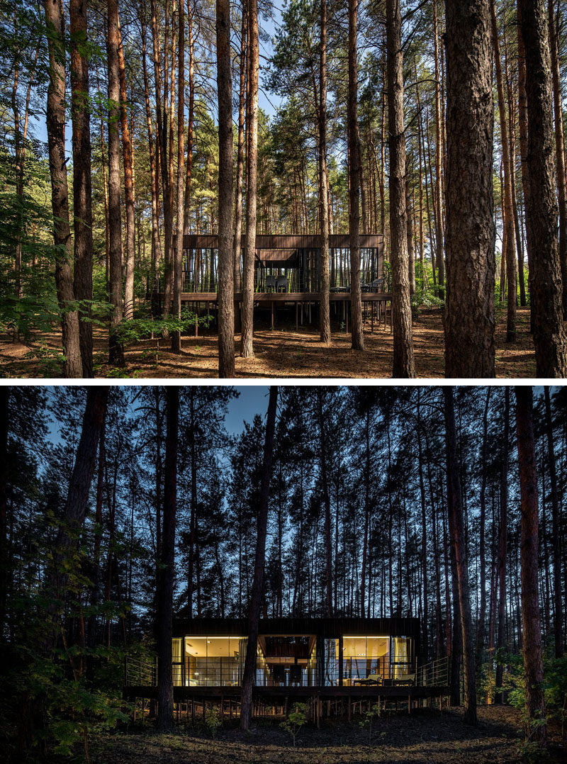 This modern guest house is integrated into the surrounding pine forest thanks to the patio and the panoramic glazing. #Architecture #Windows #ModernGuestHouse