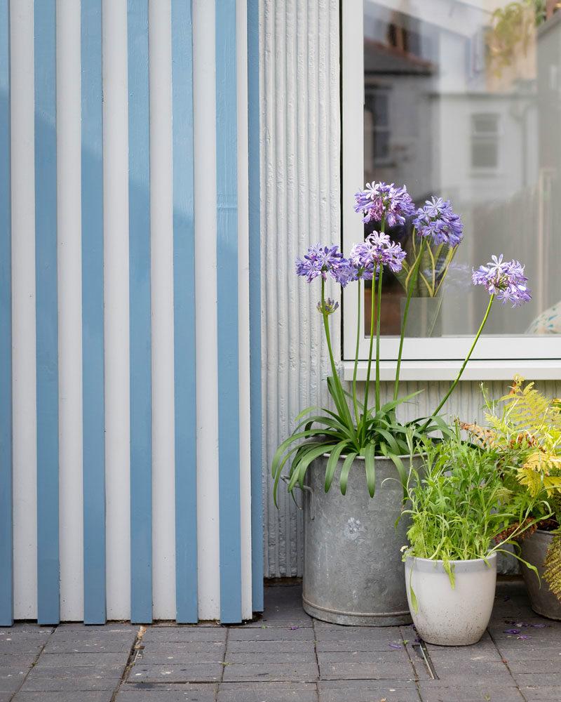 Facade Ideas - This modern house extension features a bright blue and white striped facade. #Facade #StripedFacade #ModernArchitecture