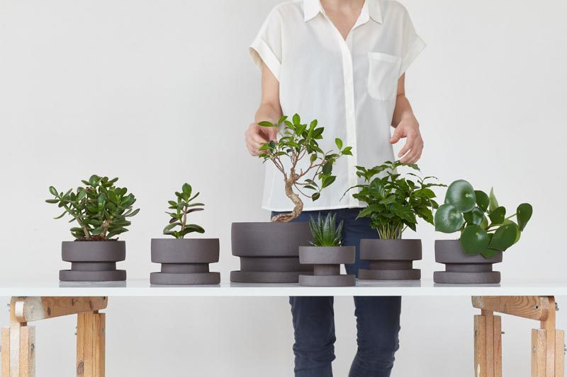 Bisqit Has Launched A Collection Of Modern Planters For The Home