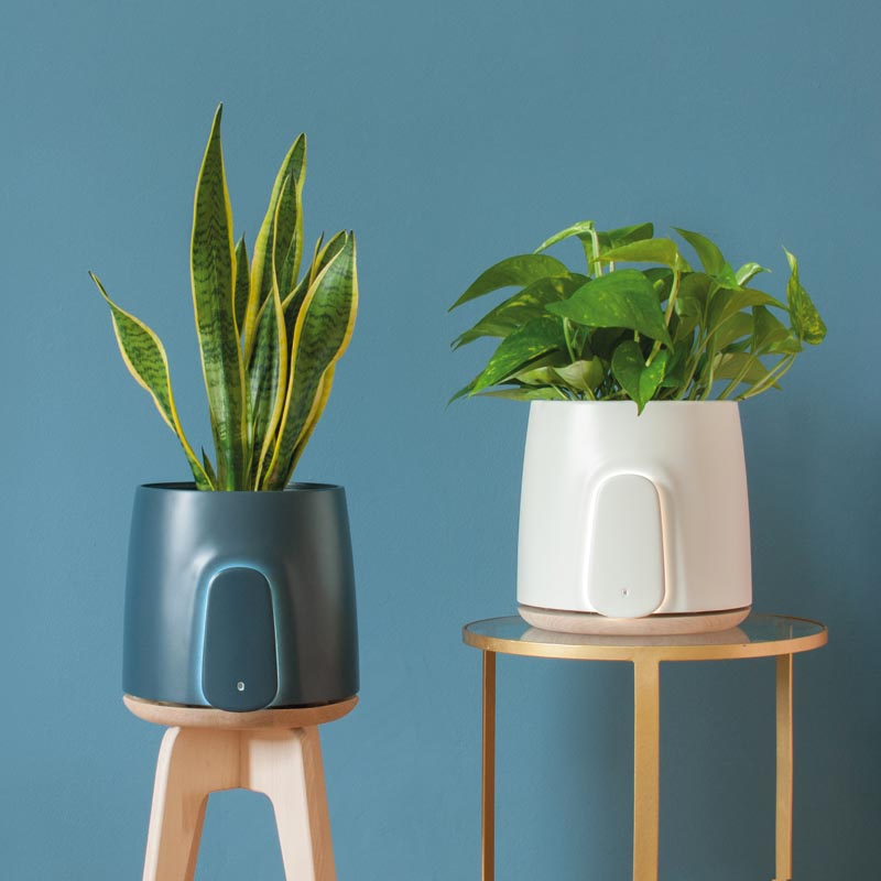 Natede Air Purifier by Vincenzo Vitiello - Laboratori Fabrici #AirPurifier #Design #ProductDesign