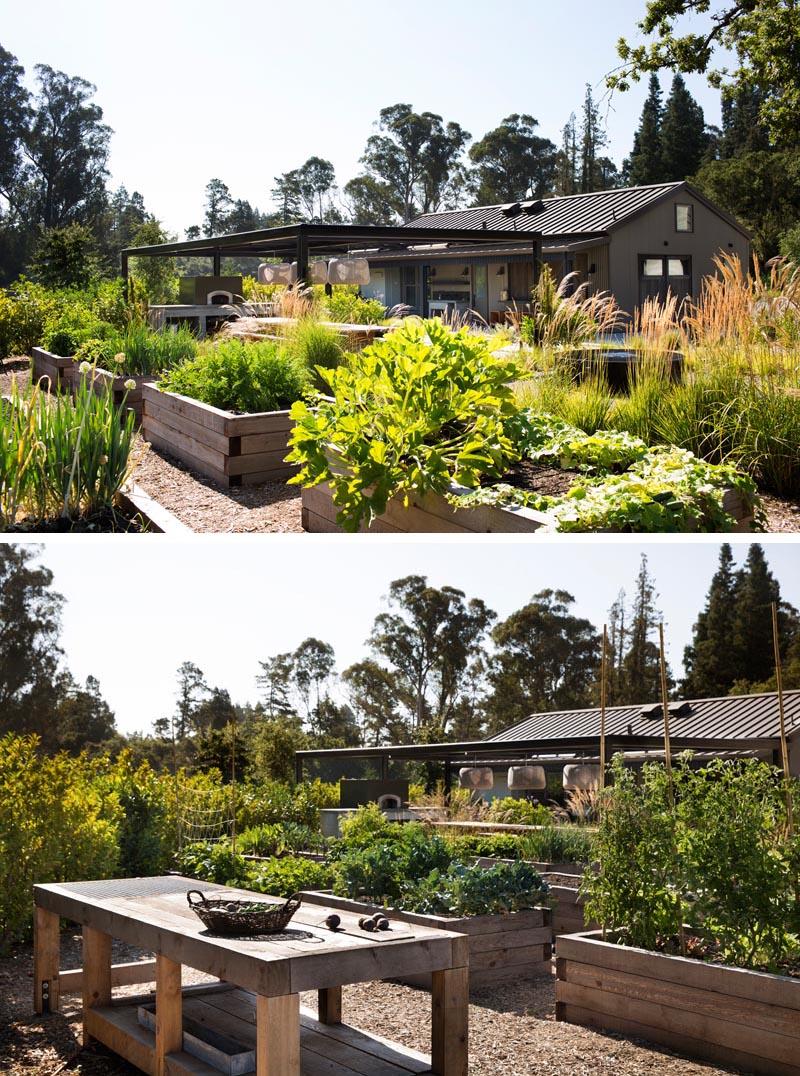A modern farmhouse with raised vegetable gardens.