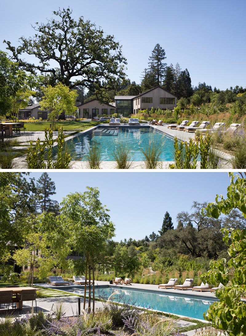 6 Large Backyard Landscaping Ideas We Noticed At This New House In California