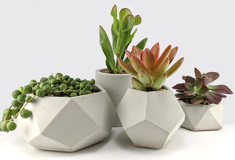 Green Begonia has created a collection of small modern concrete planters that are ideal for succulents and cacti. #ConcretePlanters #Succulents #SucculentPlanters #Cacti #CactiPlanters #ModernHomeDecor #DecorIdeas