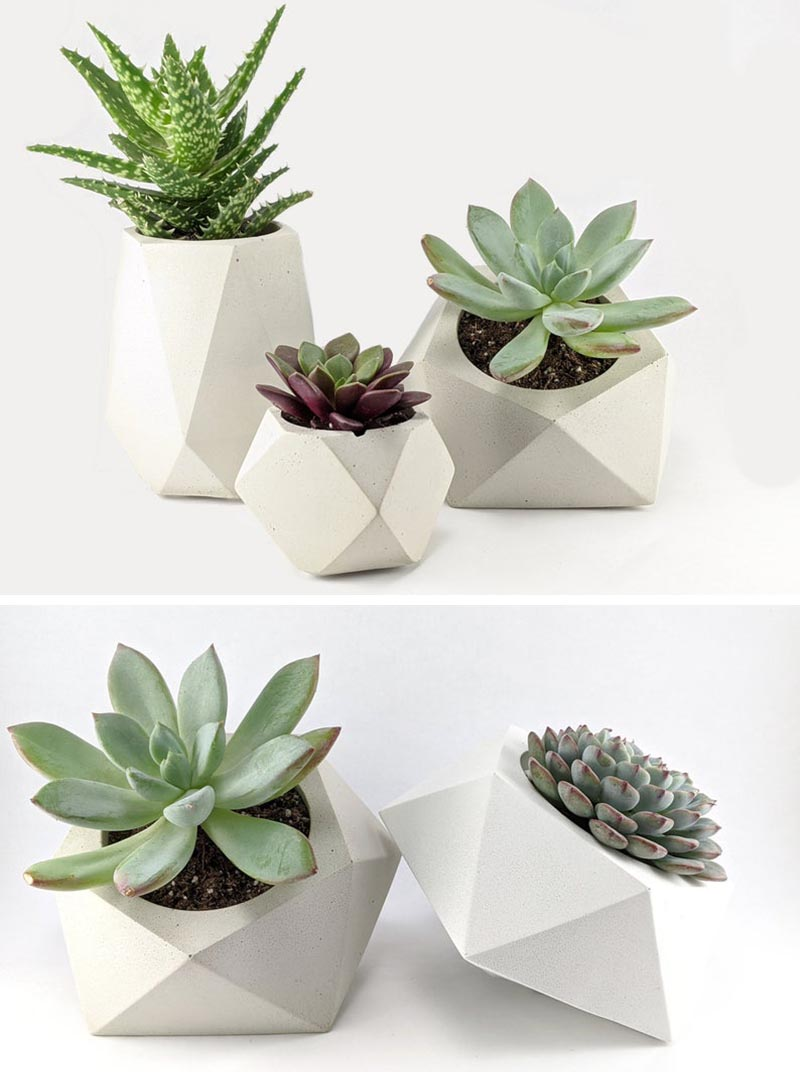 Green Begonia has created a collection of small modern concrete planters that are ideal for succulents and cacti. #ConcretePlanters #Succulents #SucculentPlanters #Cacti #CactiPlanters #TableTopPlanter #ModernHomeDecor #DecorIdeas #WhiteConcrete