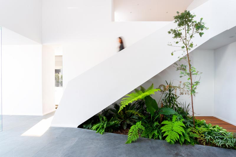 The green of the dense vegetation of this indoor garden contrasts with the black stone floors, and complements the wood path found in the lobby of the home. #IndoorGarden #StairDesign #IndoorPlants #InteriorDesign