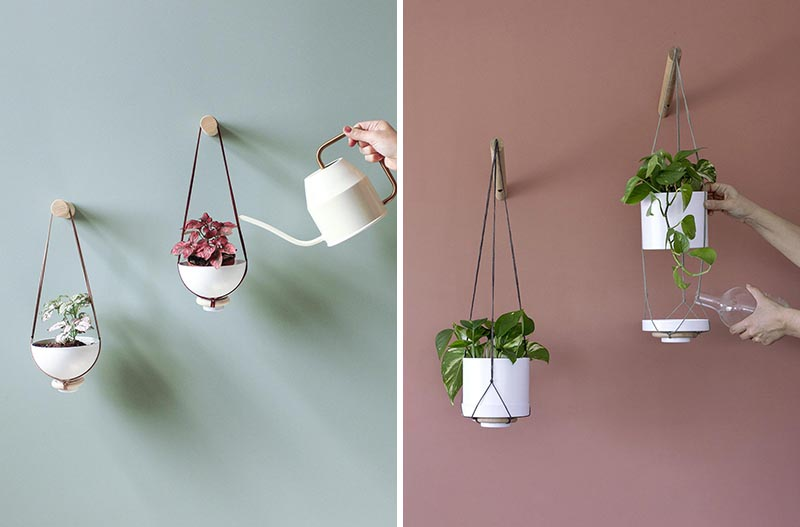 A hanging wall planter for succulents, cacti, and small plants.