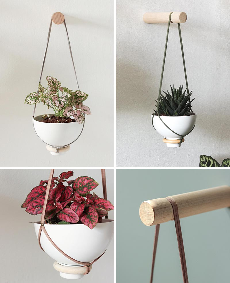 A modern hanging wall planter for succulents and cacti.