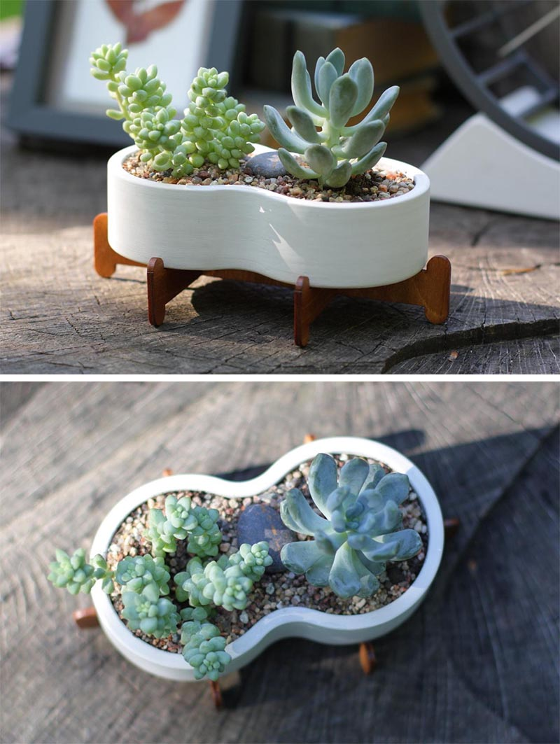 A modern white ceramic succulent pot with a small wood stand.