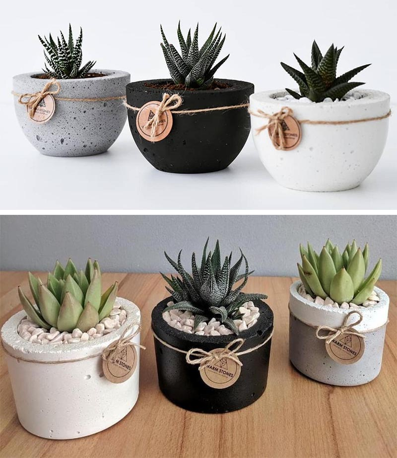 Modern concrete succulent pots in gray, white, and black.