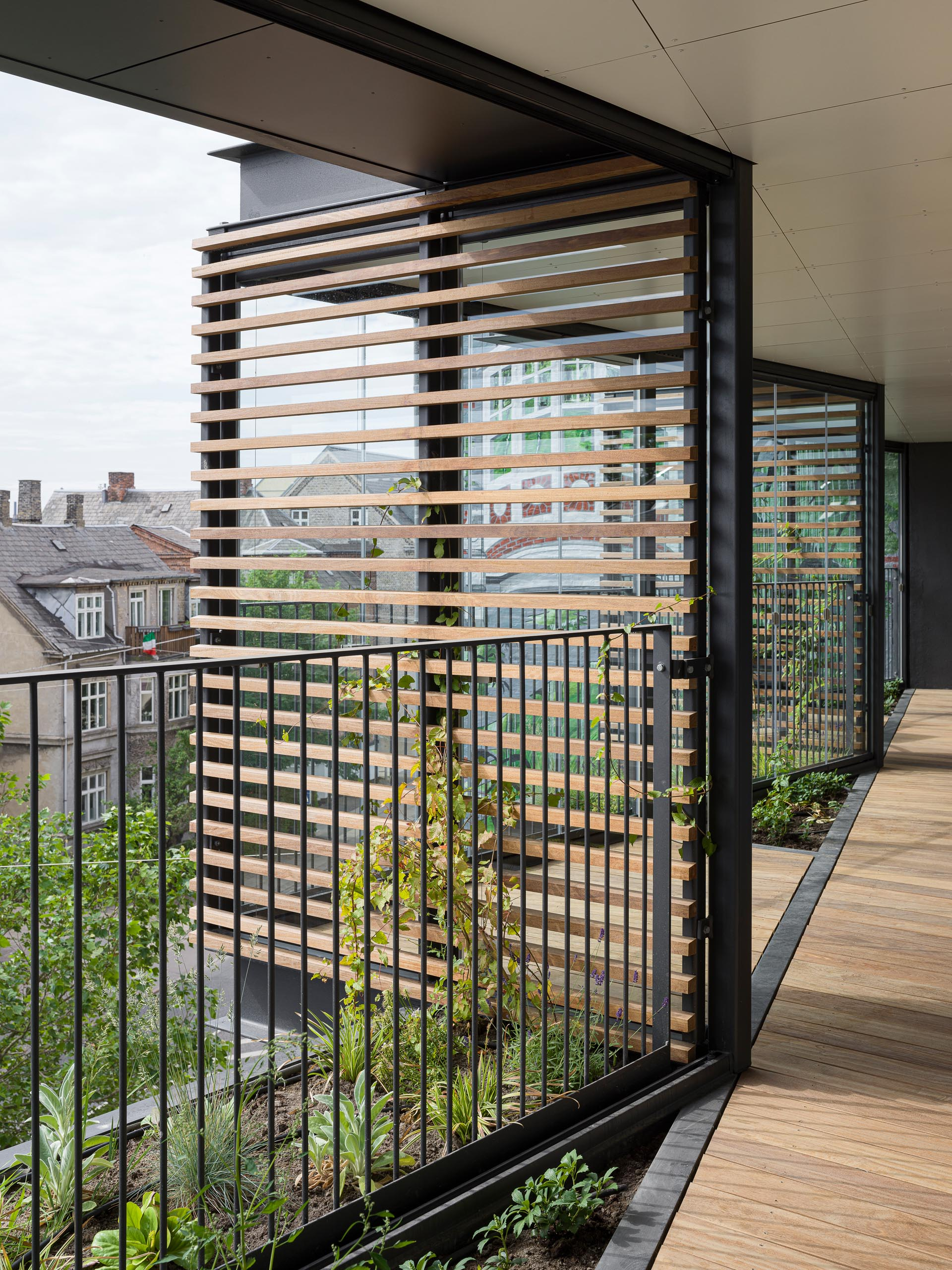Wood screens allow ivy to grow on the facade of an apartment building.