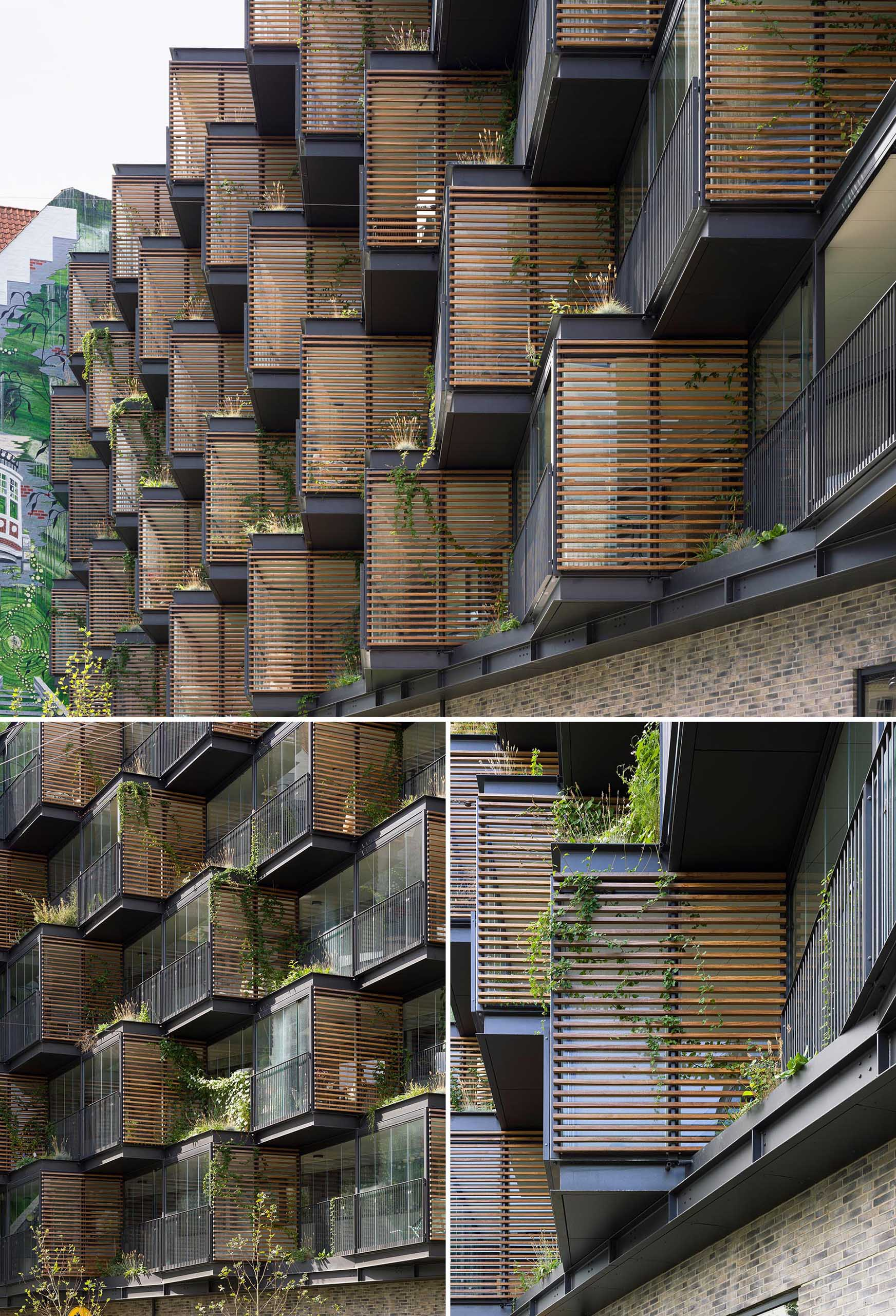 A building facade with wood screens for shade and ivy.