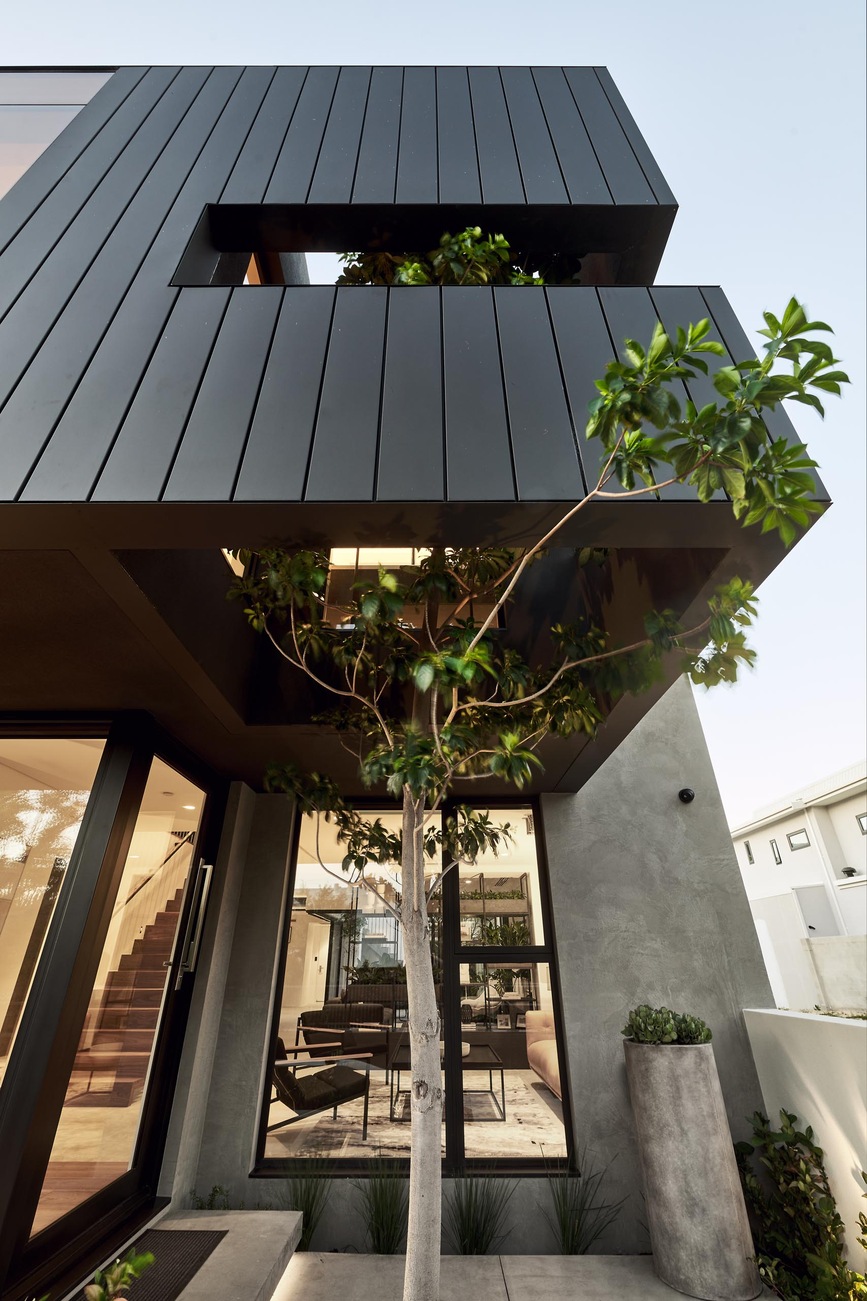 Within the matte black siding of this modern house, there's an opening to allow a tree to rise from within.