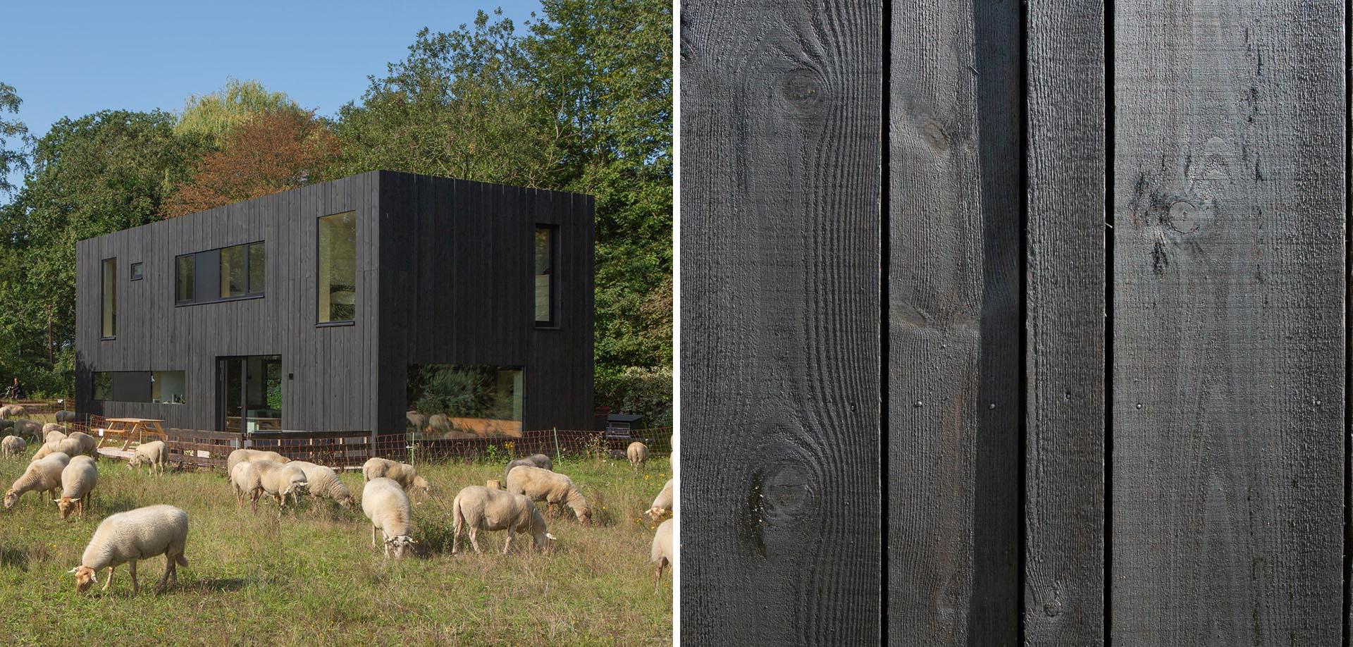 A modern prefab home with black wood siding and black window frames.