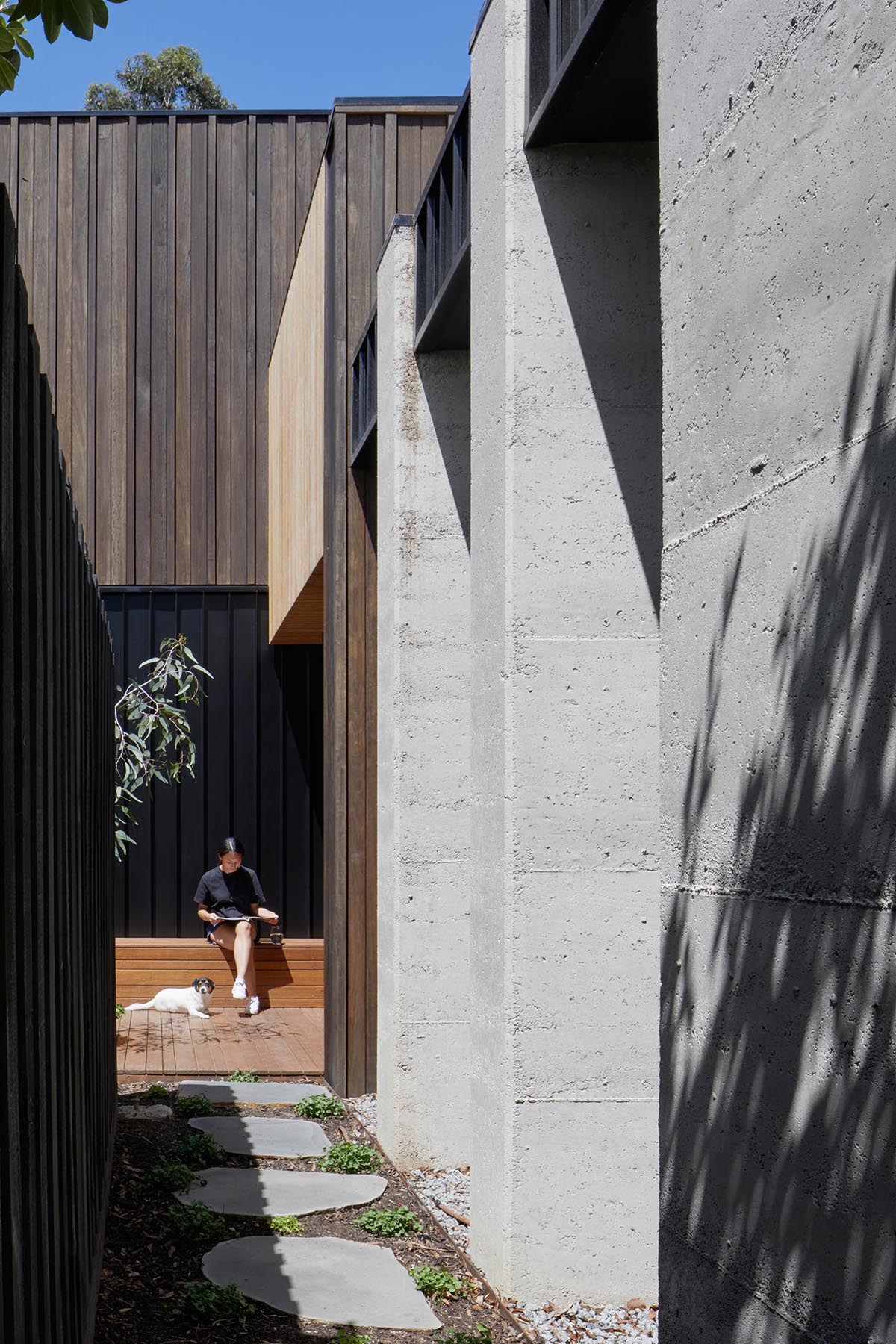 A modern home with dark wood and concrete exterior.