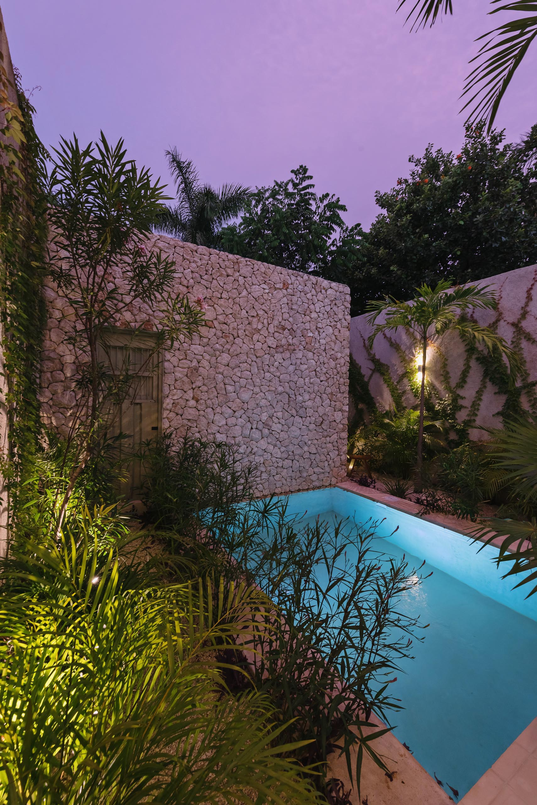 A small swimming pool with a stone wall and plenty of plants.
