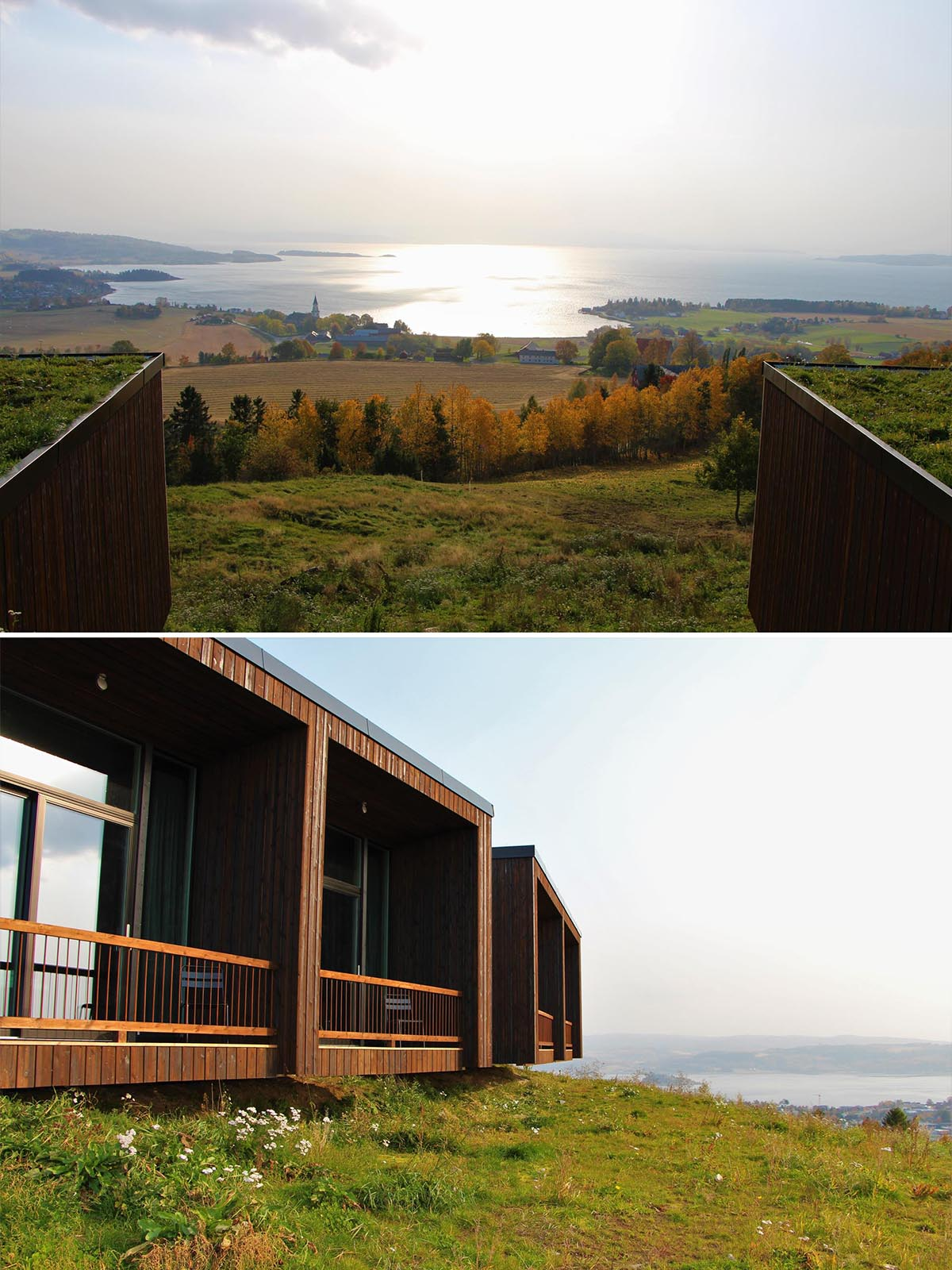 Hotel rooms with green roofs that allow them to blend into the hill.