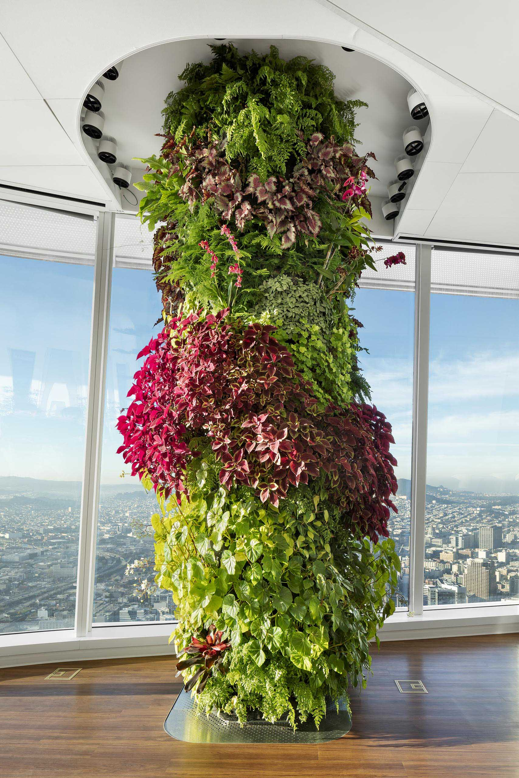 A 13 foot high vertical garden has been used to hide a building column.