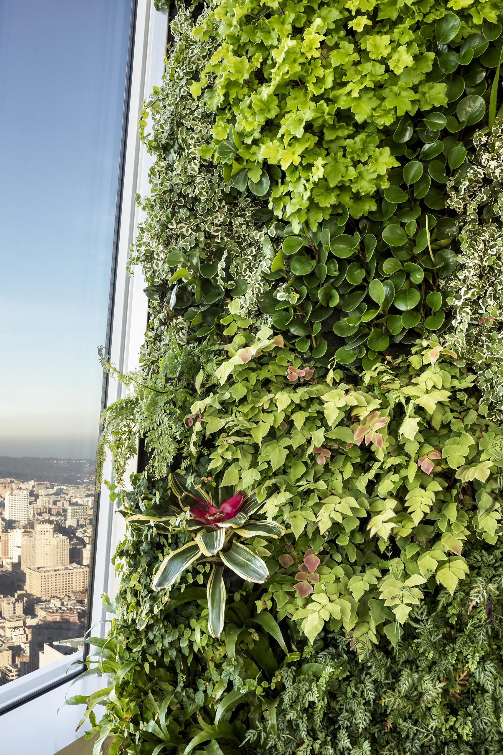 A vertical garden with edible herbs hides a building column.