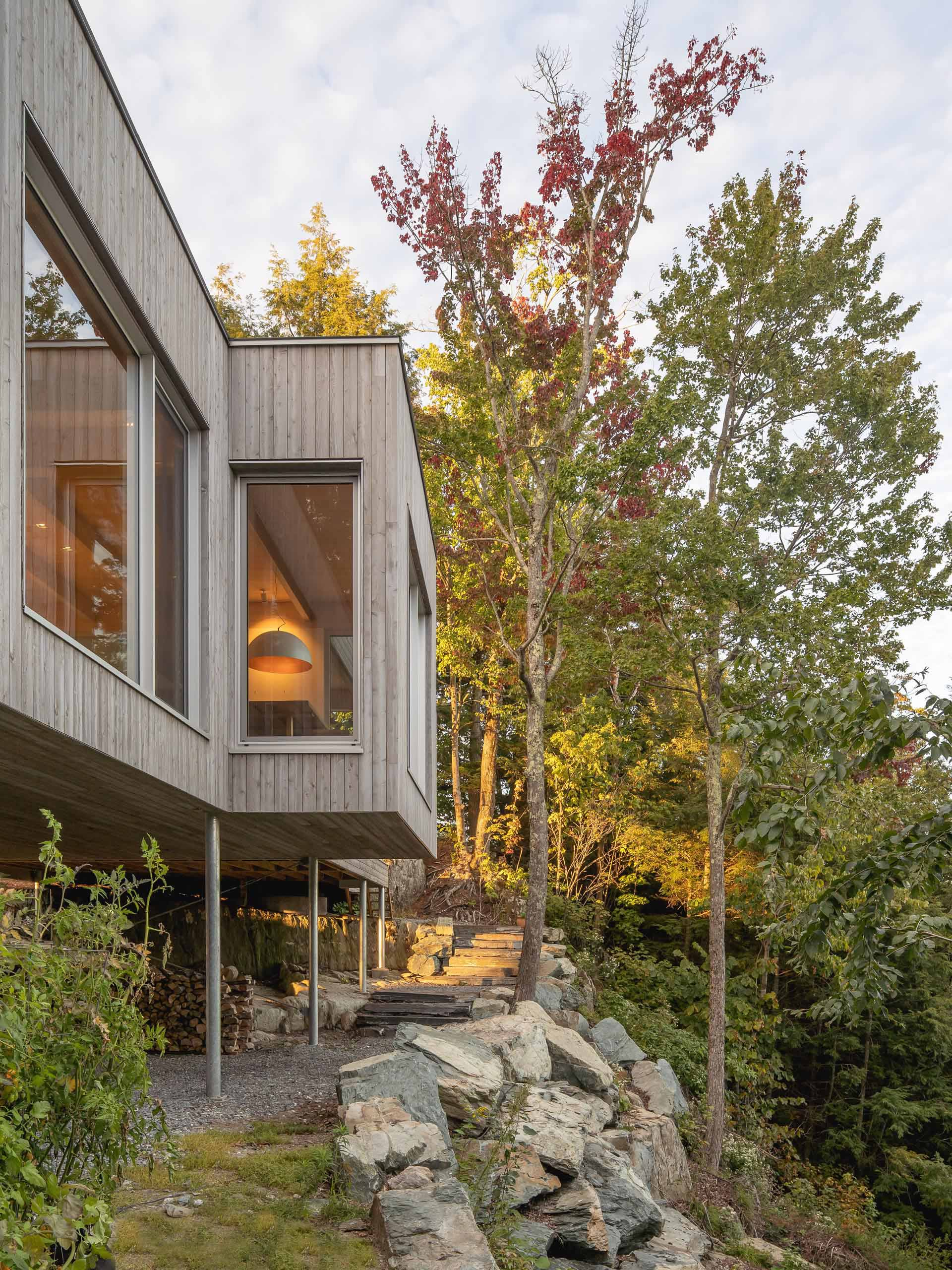 This modern house in the forest is clad in eastern white cedar, which was pretreated with a product that accelerates the greying process