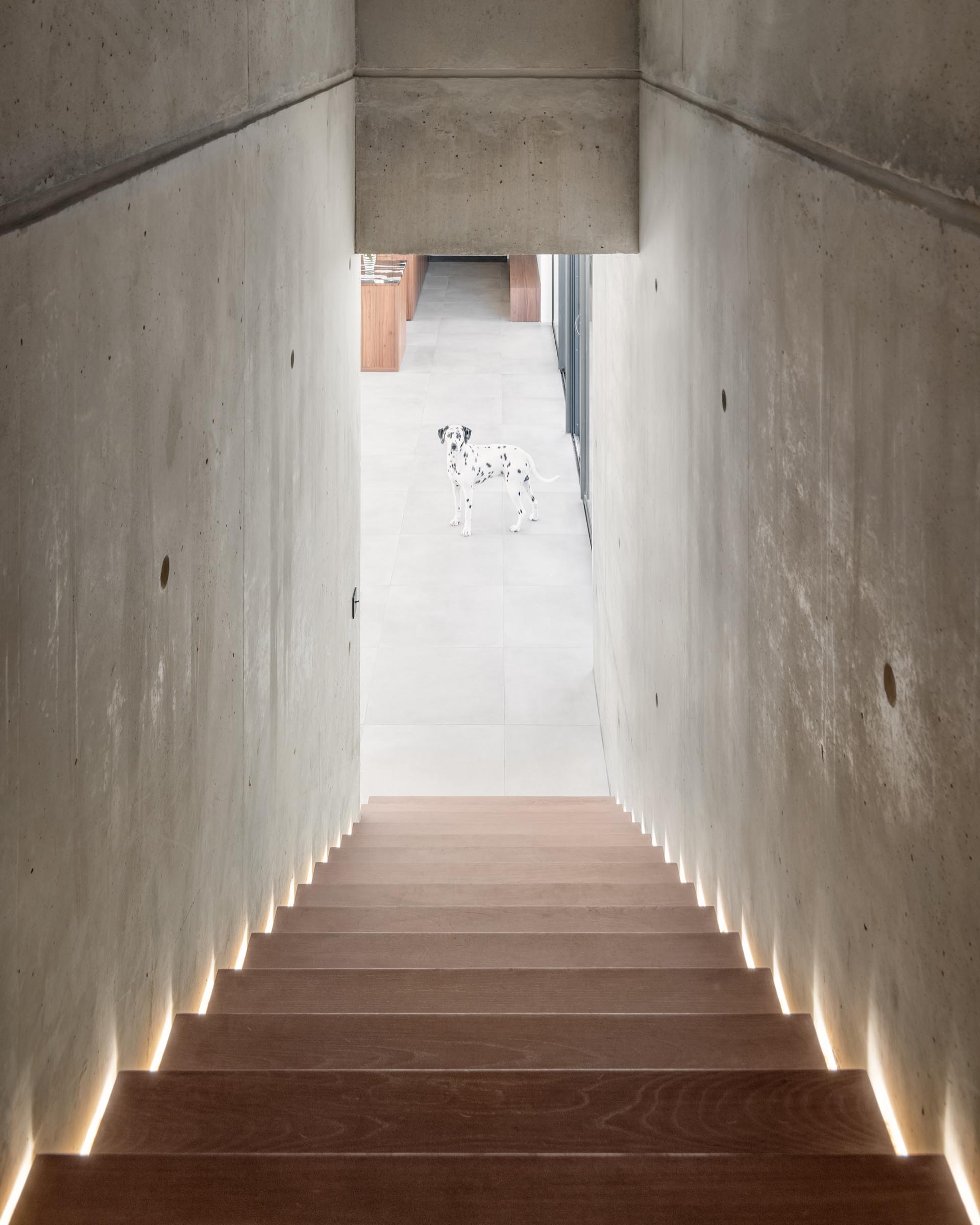 A modern concrete home with wood stairs that have hidden LED lighting.