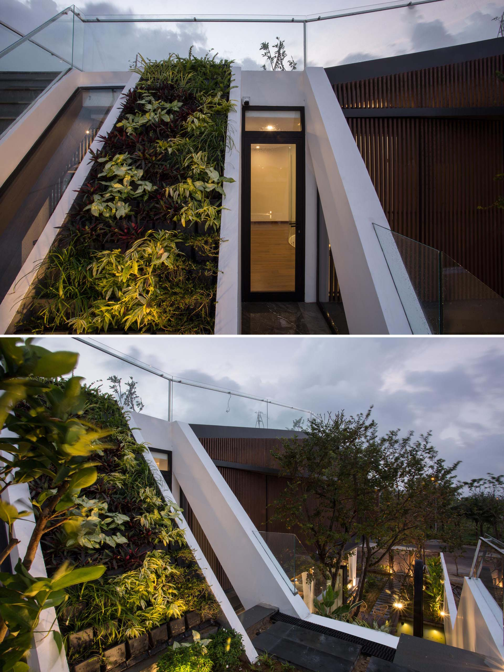 A modern home has exterior stairs that run alongside a heavily planted sloped section and a glass railing.