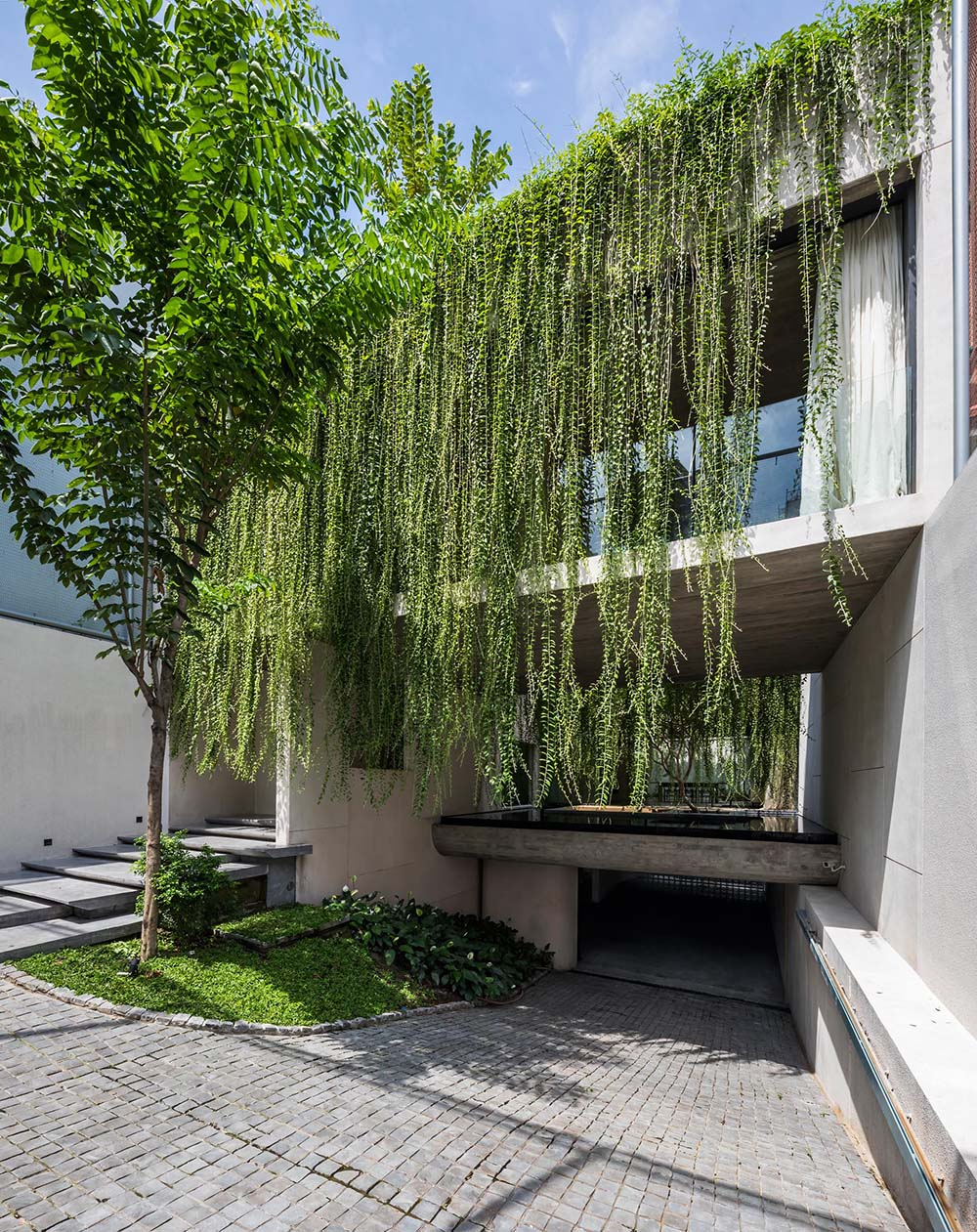 A modern house with vines that hang over the facade.