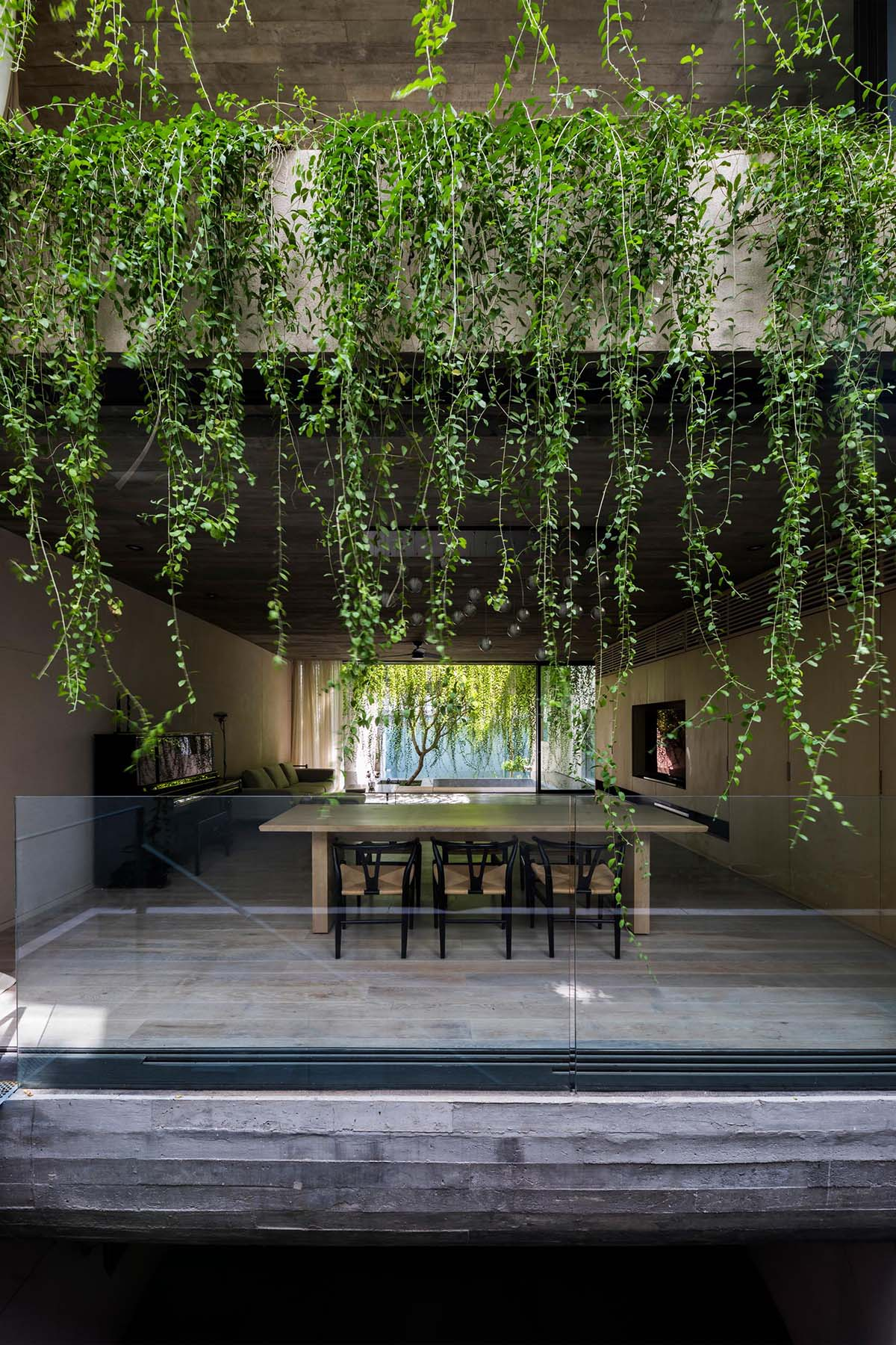 A modern concrete house with overhanging plants.