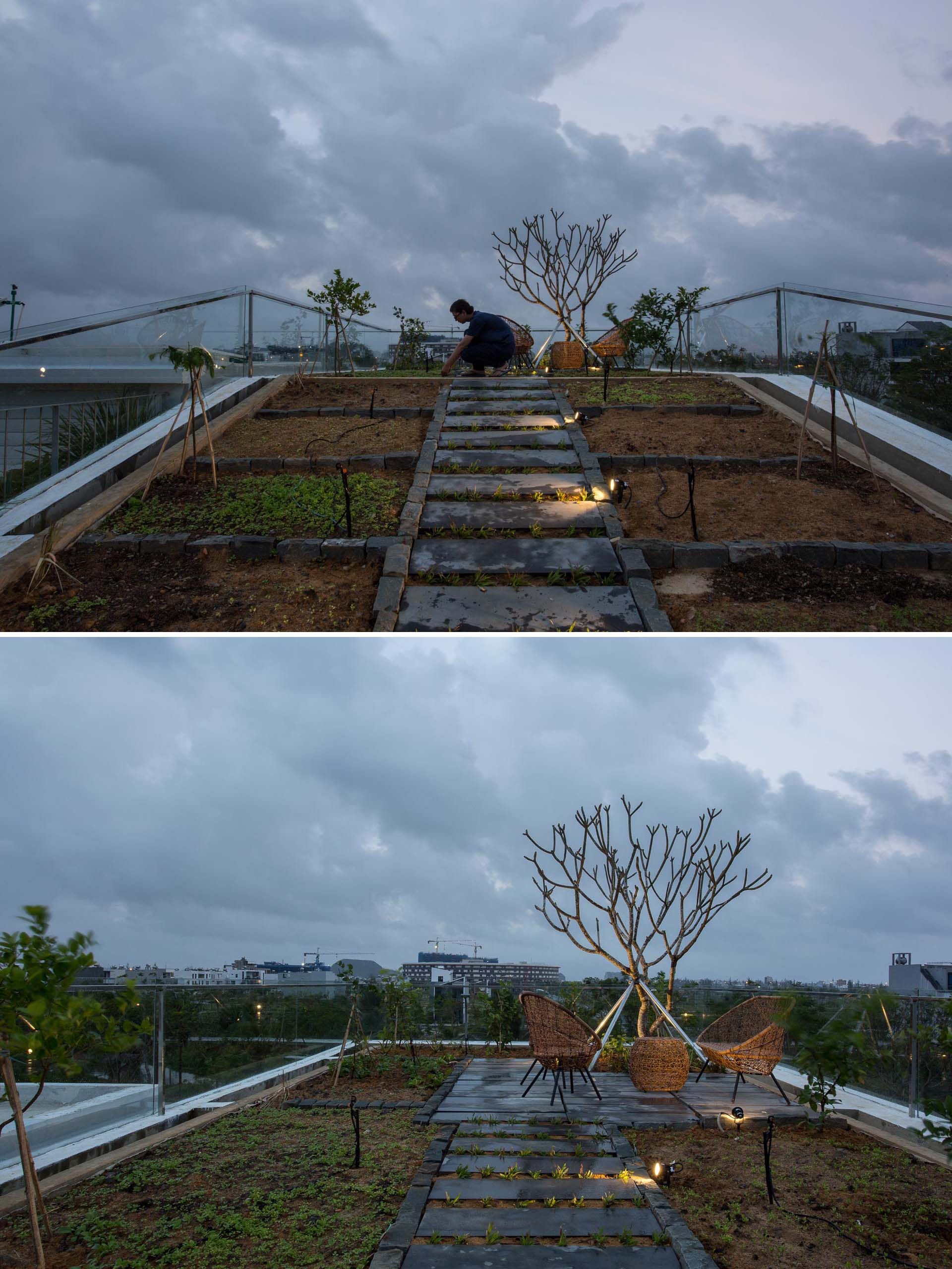 A vegetable and herb garden on the roof of a modern house uses a circulated watering system which automatically controls temperature and humidity, as well as preserves and redistributes rain water.