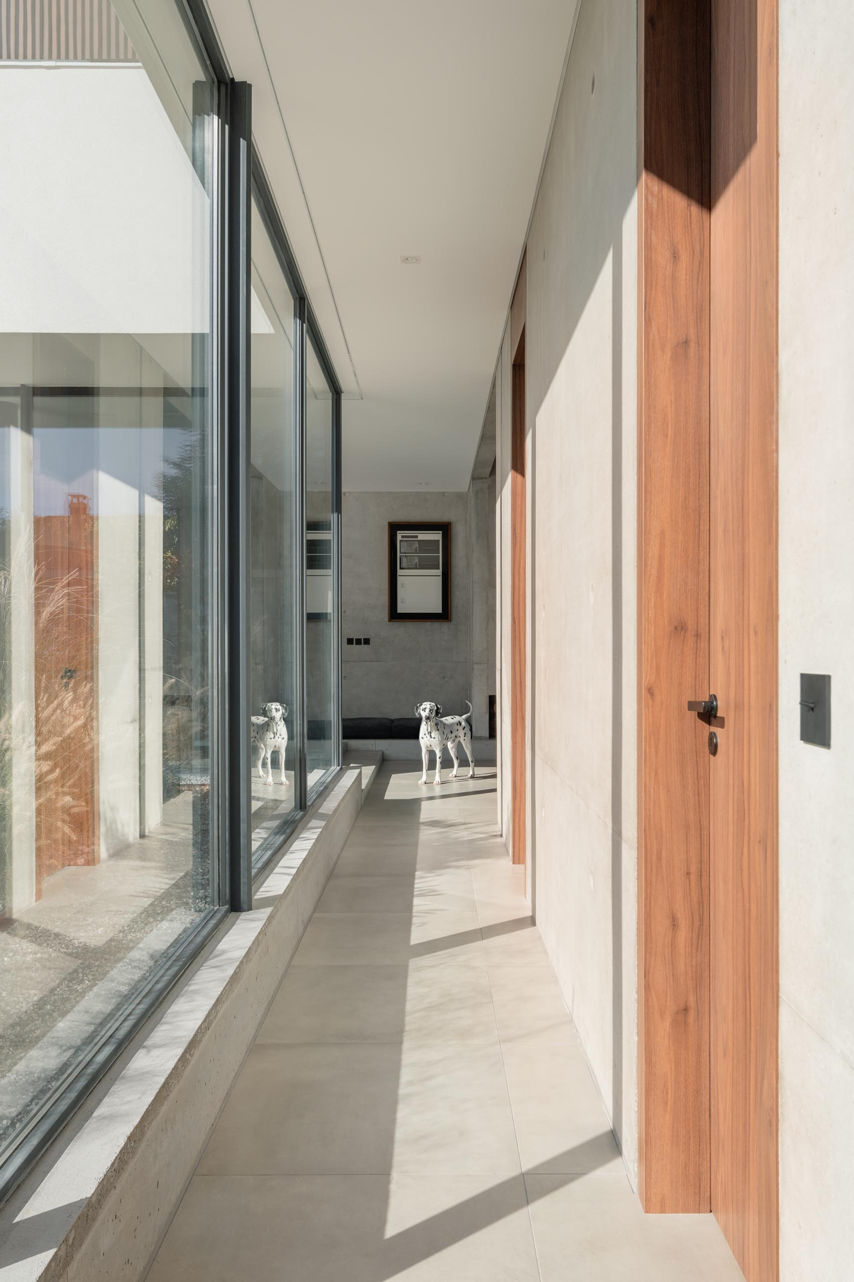 Floor-to-ceiling windows line this modern hallway and add plenty of natural light.