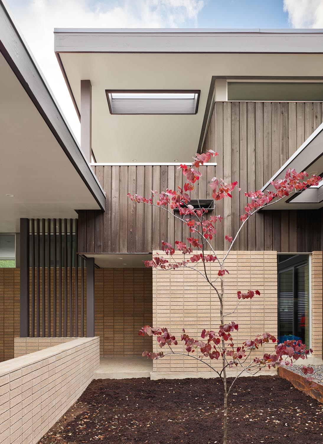 Between the carport and this mid-century modern inspired home is a small courtyard with a single tree that has been given room to grow overtime.