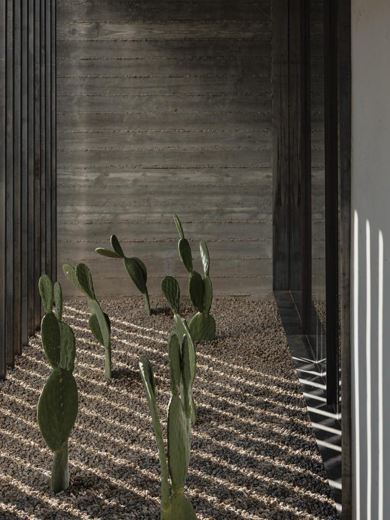 A modern home with board formed concrete walls and desert landscaping.