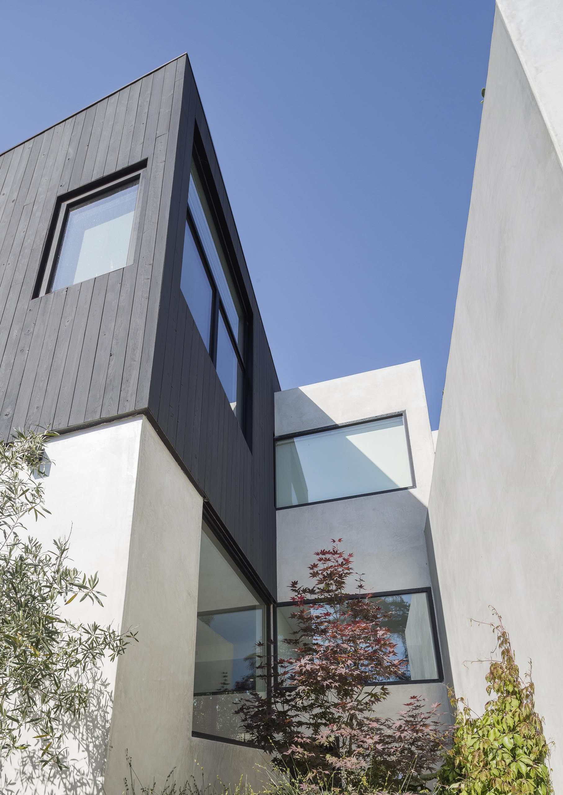 A modern home with Shou Sugi Ban charred cypress wood and a smooth exterior plaster.