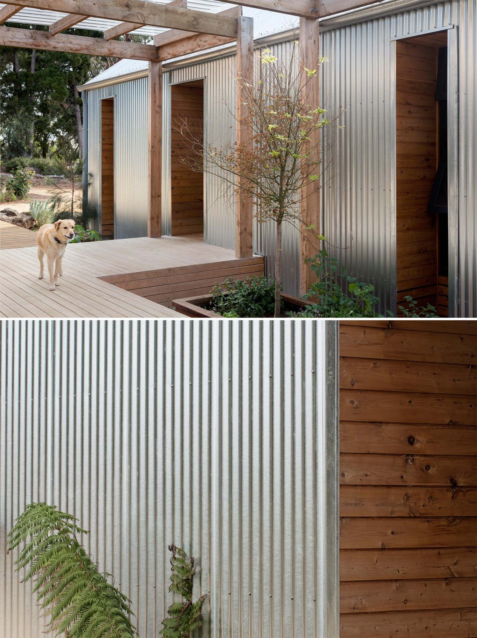 Corrugated metal and wood siding on a modern home.