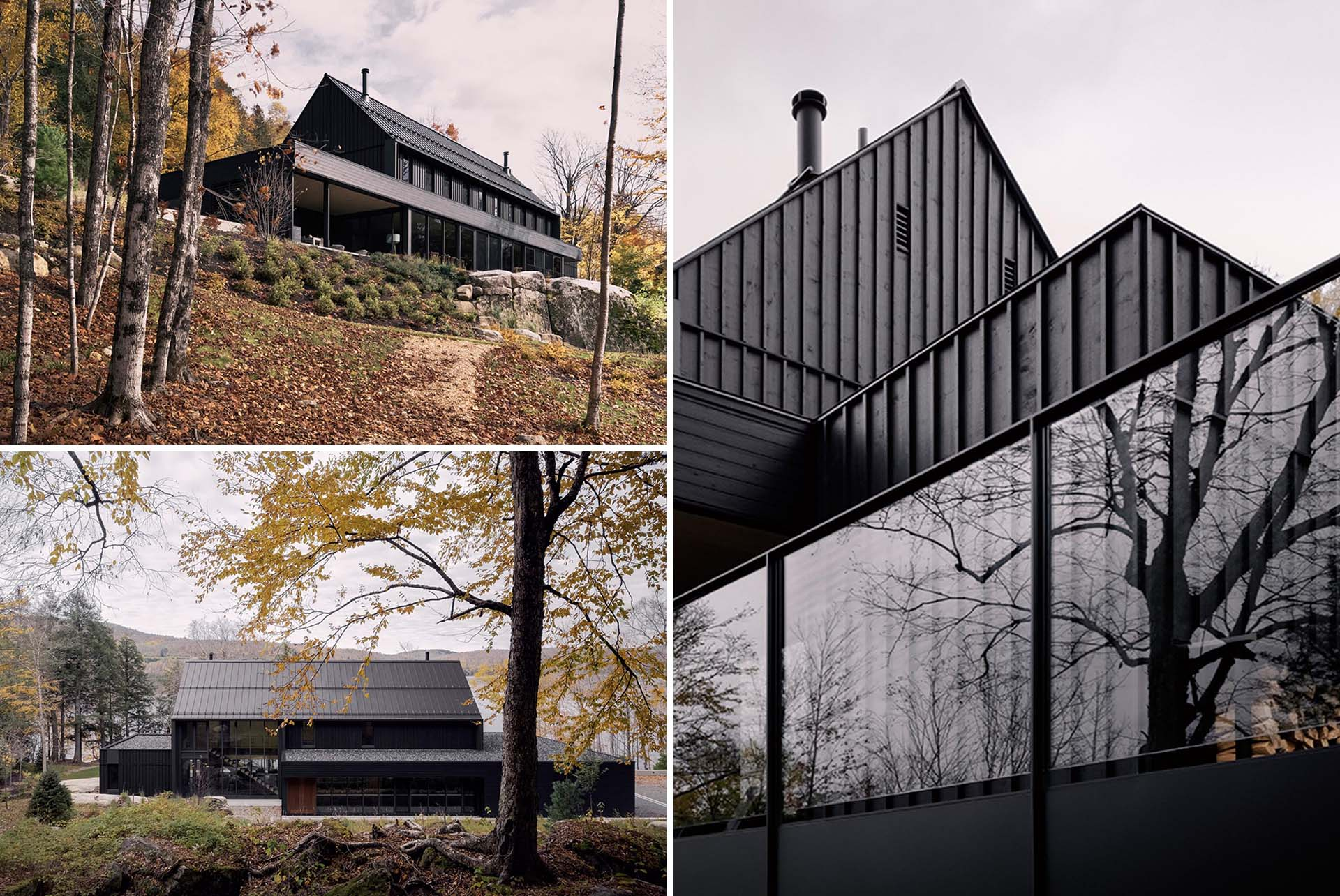 A modern house with a black exterior.