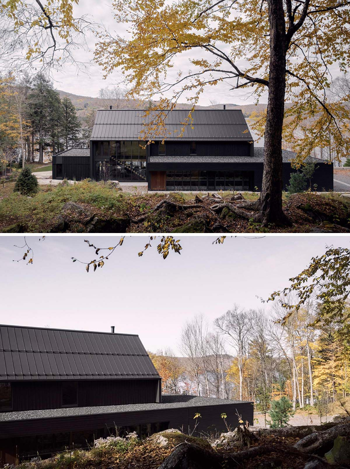 This modern house includes black horizontal and vertical siding, a black roof, as well as black window and door frames.