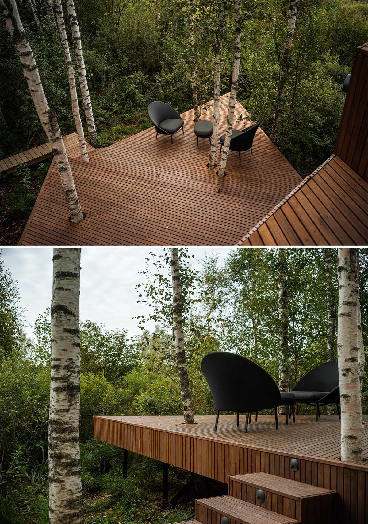 This modern wood deck, which has birch trees growing through it, expands the living space of the cabin.