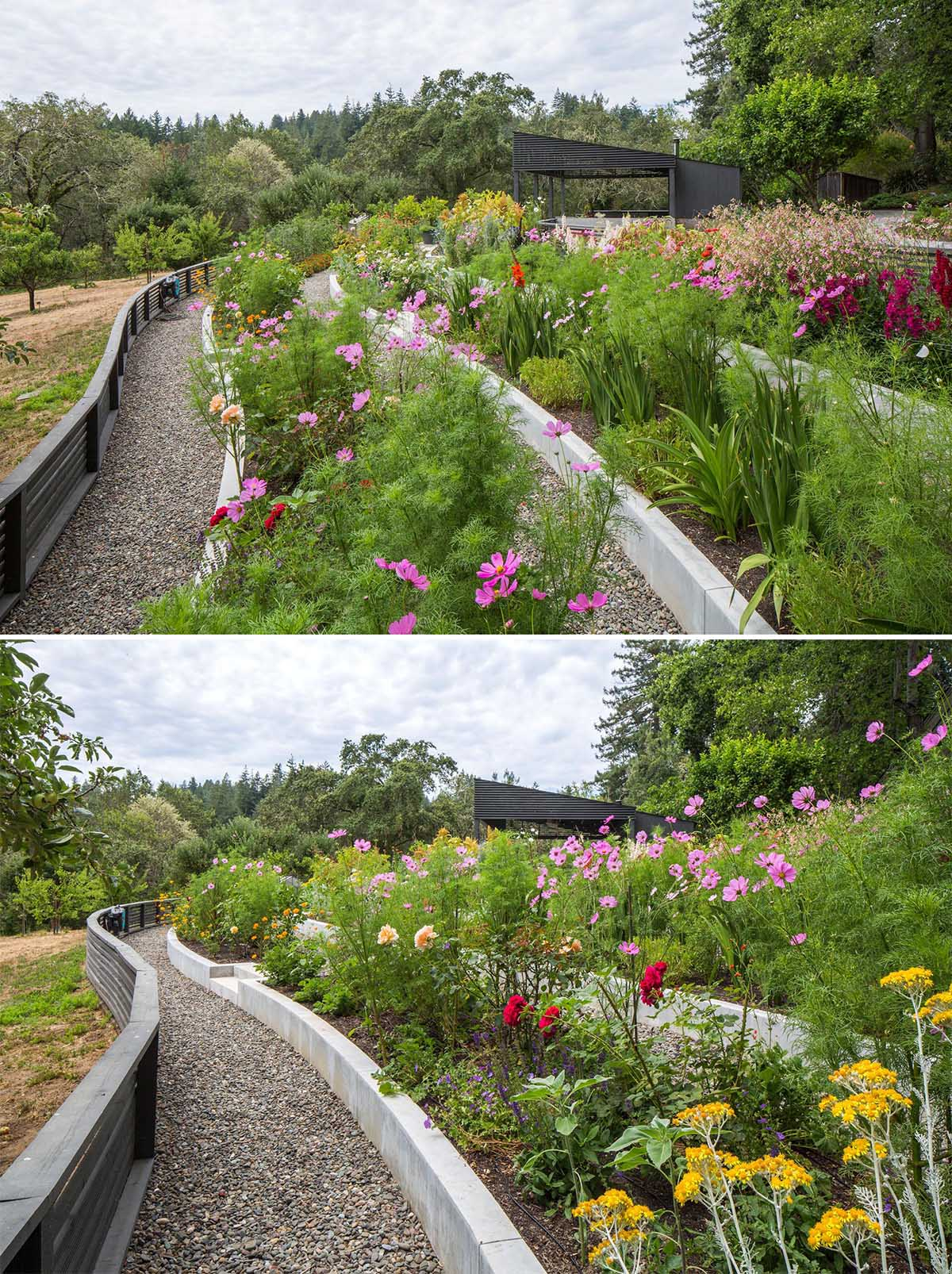 A modern garden with terraced built-in planters.